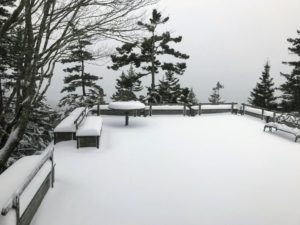 By late afternoon, several more inches of snow fell on Skylands. This is Terrace One looking out over Seal Harbor - ever so faintly.