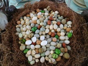 Here, lots of decorated eggs – save eggs from years past and reuse them in different ways. And go to my web site for lots of great Easter egg decorating tips and ideas – there's still time to decorate before tomorrow! http://www.marthastewart.com/1060471/easter-eggs