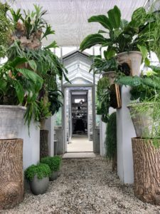 Here is a great photo Kevin took of the hallway leading from my greenhouse to the adjoining headhouse.