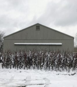 Kevin also took this photo in front of my Hay Barn, where I have about 220-trees waiting to be planted. I will share the planting process in a future blog.