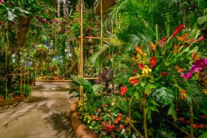 Bamboo scaffolding created a modern, leveled appearance to the Entrance Garden's take on the rainforest. This display includes bright florals, such as heliconia, vibrant orchids, and gingers. (Photo by Rob Cardillo for PHS)
