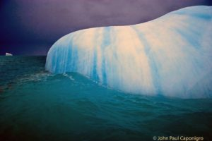John Paul waited for the penguins to swim away so the focus would be the sculptural form of the iceberg.