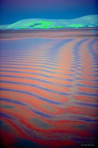 And Seth captured the color of the sky distorted in the rhythmic pattern of waves created by the passing ship along the Lemaire Channel, 2005. Here, there are spectacular sunsets with vistas of sheet ice, glaciers, icebergs and so much wildlife.