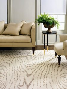 I am also excited about my collection of rugs on Amazon.com. In partnership with Safavieh, we provide a variety of rugs to fit your personal style. Our rugs offer a number of colors, textures and styles to go with any decor. Here is my faux bois pattern.