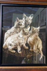 Here is another Japanese silk embroidery piece of four kittens. It was exhibited by Janice Paull Antiques in Wilmington, Delaware.