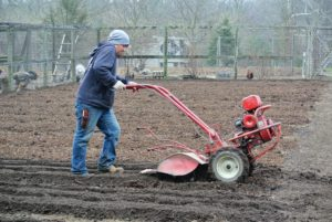 Once the compost was added to all the beds, Wilmer started tilling the beds with our trusted Troy-Bilt Pony Rear-Tine Tiller. It helps to level the ground as it turns over the soil.