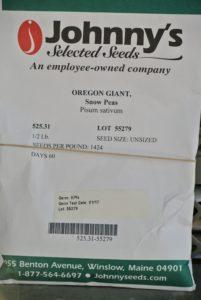 'Oregon Giant' has sweet peas inside large sweet flat pods.