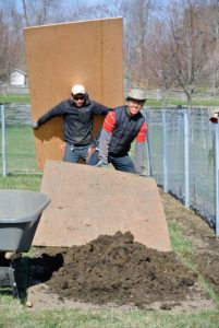 The crew placed plywood on the ground next to the planting area to create a perfectly straight edge along the bed, and to help contain the soil and compost.