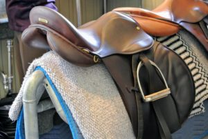 Here is my saddle, cleaned, conditioned and ready for the next ride.