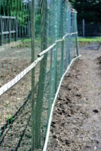 The holes of this netting are wide enough to accommodate the growing plants, but small enough so they don't fall through.