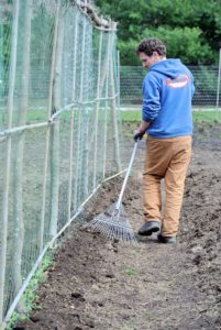 Once all the seeds are in the ground, Ryan covers them with an inch-and-a-half of soil.