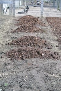 Compost and mulch are available at many garden stores.
