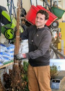 Ryan places another bundle of eastern larch into bucket - these seedlings are slightly taller than all the others.