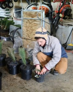 As more pots are filled, Ryan helps to place more weed disks on each container - they should fit securely under the lip of the pot if possible, so light cannot hit the surface. These disks are also pre-cut with slits that easily wrap around planting stems.