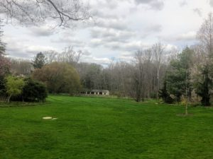 We walked across this expansive lawn towards the Cut Flower Garden and the Potting Sheds.