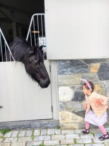 I decided to have the egg hunt down by the stable this year. Here is Quinn Berry talking to my handsome Friesian, Rinze.