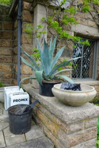To protect the rather porous and fragile pots, I like to line them with garbage bags, so the pots don't soak up too much water. The garbage bags have drain holes at the bottom and are neatly tucked inside the pot, so they are not visible.
