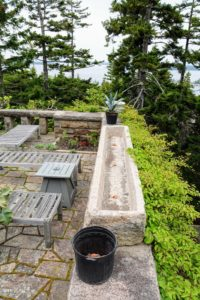 I bought this massive stone trough at Trade Secrets in 2013. It looks so beautiful here on the Maine terrace.