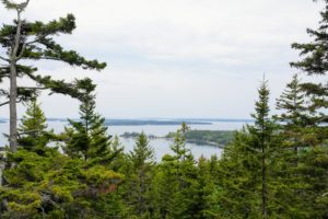 Here is a view that never gets tiring. It's from the terrace overlooking Seal Harbor and Sutton's Island in the distance. It was a perfect day for planting at Skylands. Tomorrow, I will share more photos from our holiday weekend in Maine.