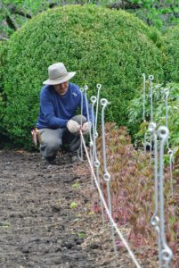 Chhiring secures twine from one end of the row to the other to make sure the stakes are lined up properly.