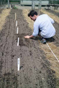 Ryan then covers the seeds with a thin sprinkling of backfilled soil.
