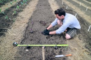 Once again, Ryan uses a tape measure to ensure the rows and columns are as straight as possible.