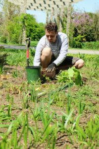 Ryan creates a hole twice the size of the container. A plant's roots grow out more easily into loosened, enriched soil. Here, he is planting astilboides.