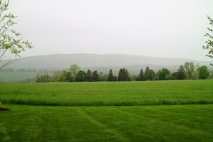 The town of Sharon is surrounded by Salisbury to the north, the Housatonic River to the east, Kent, Connecticut to the south, and to the west, Dutchess County, New York. It was a foggy, cold and rainy day, but gardeners still arrived early and eager to shop.