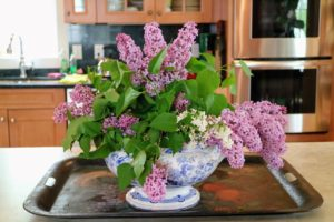 And more lilacs were in this vessel on the kitchen counter.