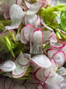 We also served other salad alternatives including lettuce and radishes - also grown right here in my vegetable greenhouse.