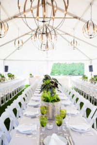 Plants lined the center of each dinner table. It looked so elegant along with the votives, green goblets and white table settings. (Photo by Carl Timpone/BFA.com)