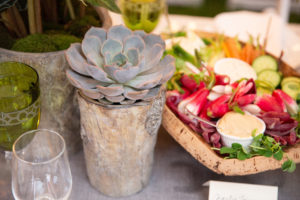 Here is one of the small succulents potted in a faux bois container. (Photo by Carl Timpone/BFA.com)