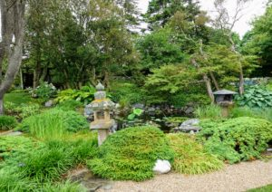 The gardens were filled with a variety of hostas, mixed confiers and ornamental grasses.