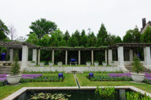 Here is a view of the raised pergola at the south end of the garden. It is framed with gorgeous evergreen trees. Among the many plants - blue delphiniums, irises, artemisia, lavender, and nepeta.