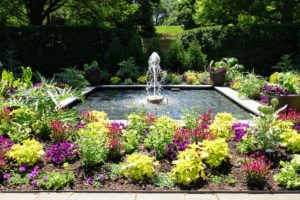 This garden, with its pretty fountain, was a beautiful space for our book signing.