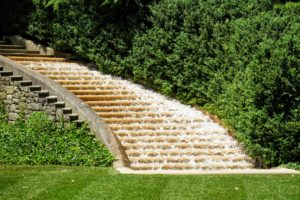 Here, water tumbles down the Italian Water Garden's stairs, backed by a hedge of boxwood, Buxus sempervirens 'Myrtifolia'.