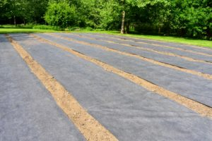 This year, we put down long sheets of weed cloth in between the rows where the pumpkin seeds will be planted. The weed cloth will hopefully cut down on a lot of time spent weeding this summer.