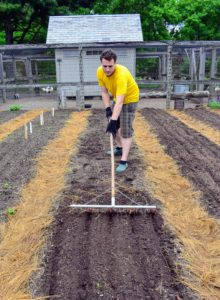 Here is Ryan creating the long rows for the onion plants. Ryan uses this bed preparation rake from Johnny's Selected Seeds to create furrows in the soil. Hard plastic tubes slide onto selected teeth of the rake to mark the rows. http://www.johnnyseeds.com/