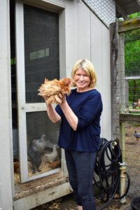 And here I am holding one of our new Frizzle chickens. Thank you My Pet Chicken, for all these wonderful layers.