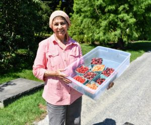 And here is my longtime housekeeper, Laura, who picked another big batch of juicy raspberries. What berries are you harvesting? Share comments below - I am always so excited to hear from you.
