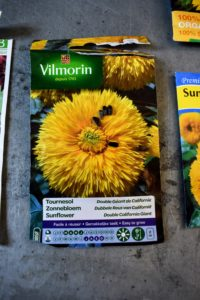 As many of you know, I always seek out the most unique varieties, especially when I travel. I bought these Vilmorin sunflower seeds earlier last year during a trip to Paris with my daughter and grandchildren.
