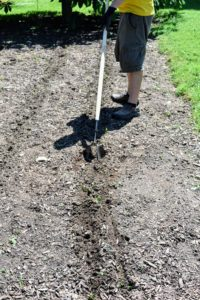 """Once a row is filled, Ryan uses the same """"Zipper"""" tool to cover the seeds with soil."""