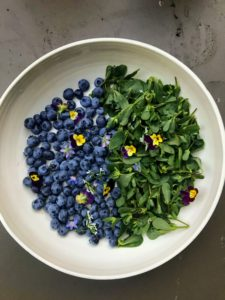 There was also lots of fresh blueberries and purslane for our dinner salads.