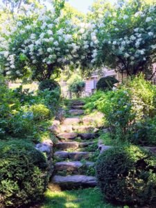 These are the stone steps leading to Dirt Road Farm's gardens, chicken coop and barn. It was a warm but beautiful summer evening in Weston, a town in Fairfield County.
