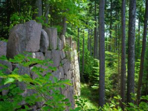 """I love this view of the wall ledge with """"Rockefeller's Teeth"""" at the top."""