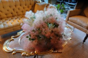 Kevin also made this beautiful Cotinus arrangement, Cotinus coggygria, best known for the long, fluffy flowers that resemble clouds of smoke over the plant.