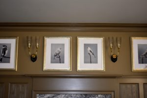 These antique sconces with their decorative shell shaped bases are above the mantel in my Brown Room. Many 17th century candle sconces were often made of brass or silver.