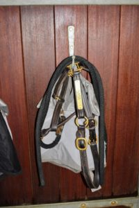 On the outside, each horse has a hook for its halter. This one belongs to my Friesian, Sasa.