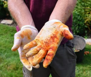 Here are Ryan's pollen stained gloves - it's always a good idea to wear gloves and clothes you don't mind getting dirty.