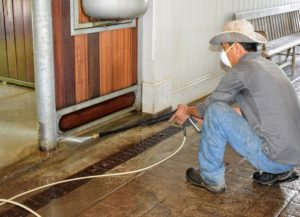 Every nook and cranny is washed to remove as much organic matter as possible. During these major cleaning sessions, it's also good to inspect the stalls in case there are other issues or repairs that may need addressing.